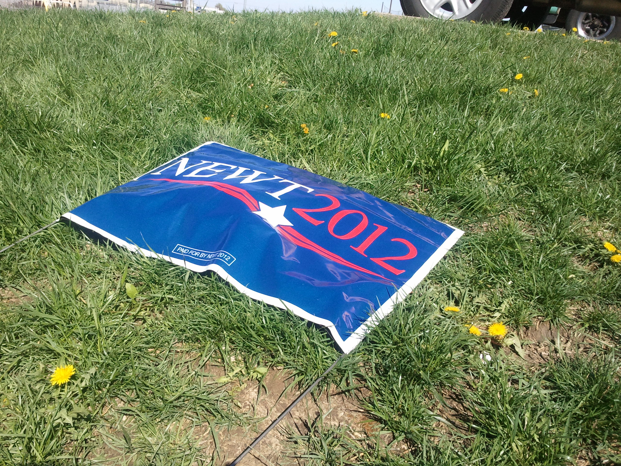 picture of Newt Gingrich Campaign sign on the grass