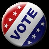 2016 Vote Pin